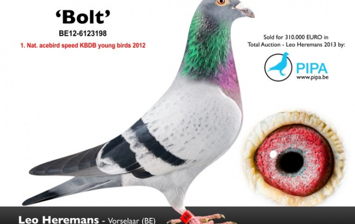 be12-6123198-bolt