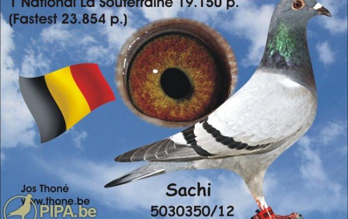 thone_foto_sachi_12-5030350
