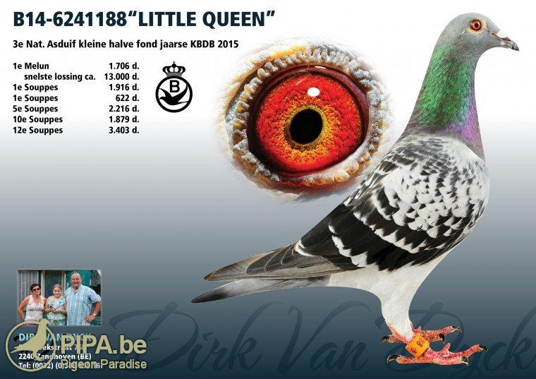 b14-6241188_little-queen