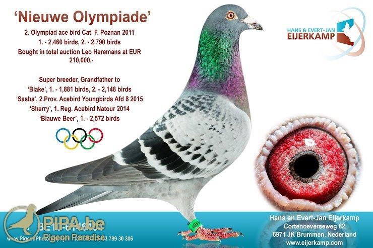 be10-6146101_nieuwe-olympiade_eijerkamp