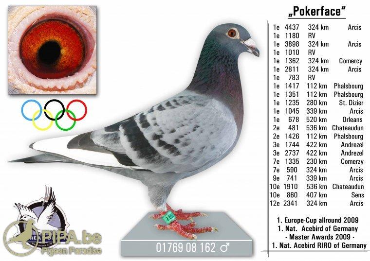 dv01769-08-162_pokerface_drapa