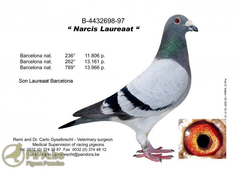 narcislaureaat_0