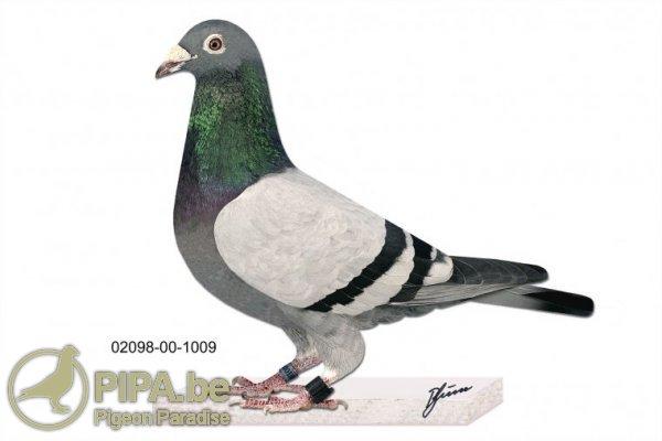 prange_02098-00-1009