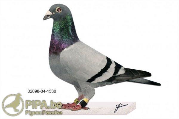 prange_02098-04-1530