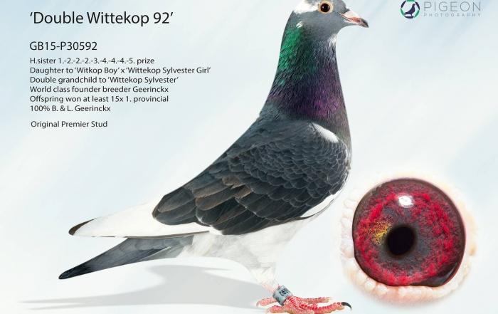 GB15-P30592_2