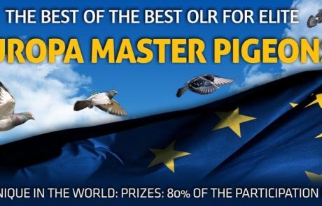 Europa Master Pigeons One Loft Race